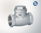 Threaded stainless steel check valve